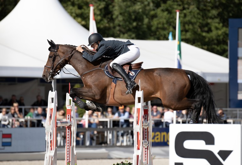 FEI WBFSH Jumping World Breeding Championship for Young Horses Zangersheide